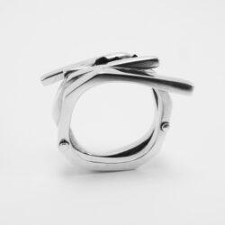 Ring Tierra